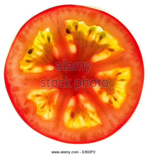Sliced, diced tomatoes - Stock Image