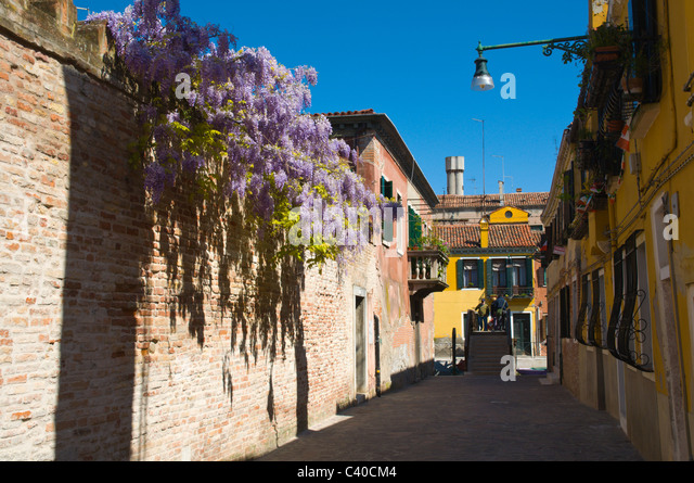 jewish ghetto in venice italy The world's oldest ghetto is the jewish ghetto in venice, now a site rich in culture , art, community spirit and history.