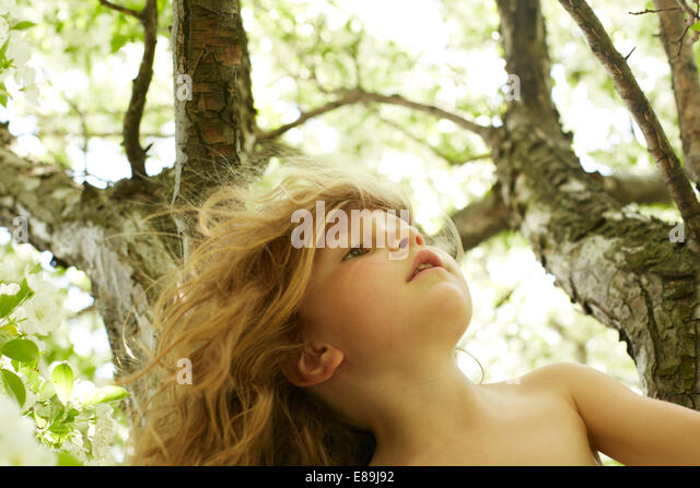 Girl climbing tree - Stock Image