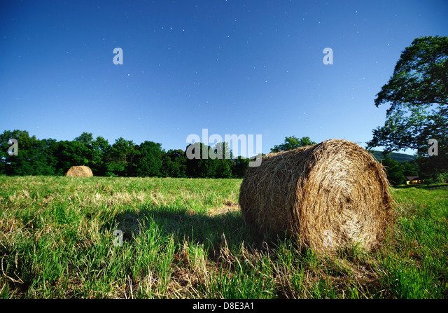 Hay bale in the moonlight - Stock Image