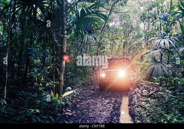 Monkey river trail, Belize - Stock Image