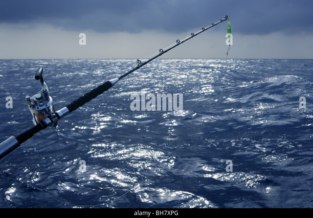 Angler fish deep sea stock photos angler fish deep sea for Sea fishing games