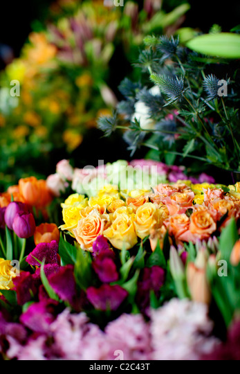 Florist shop - Stock Image