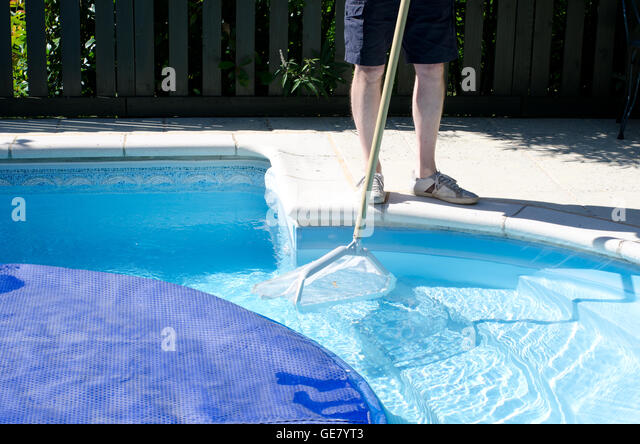 Swimming Pool Cleaning Net : Pool cleaning stock photos images