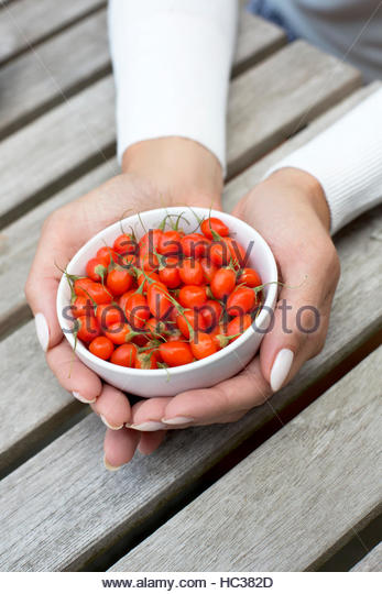 A woman's hands holding a bowl of grape tomatoes. - Stock Image