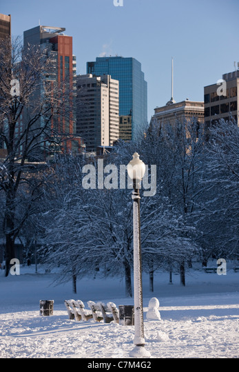 Lamppost in a public park with city in the background, Boston Common, Boston, Massachusetts, USA - Stock Image