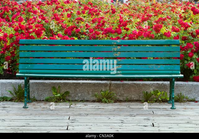 Empty bench - Stock Image