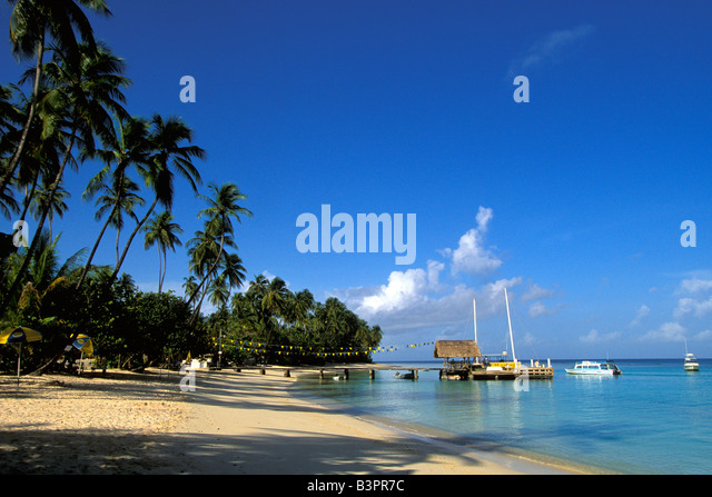 Tobago Caribbean island Pigeon Point Heritage Park beach thatch hut boat dock palm trees - Stock Image