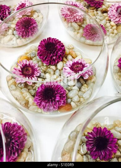 Floral fishbowl - Stock-Bilder