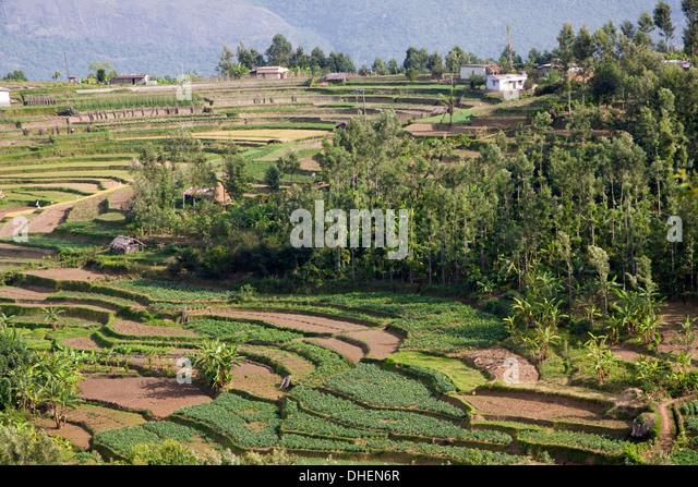 Kerala landscape high angle view stock photos kerala for Terrace 6 indore address