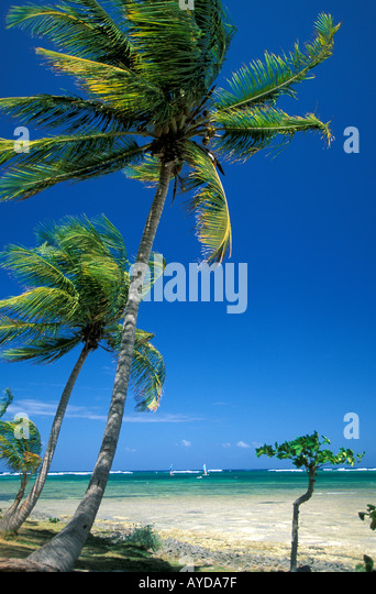 Dominican Republic Punta Cana - Stock Image