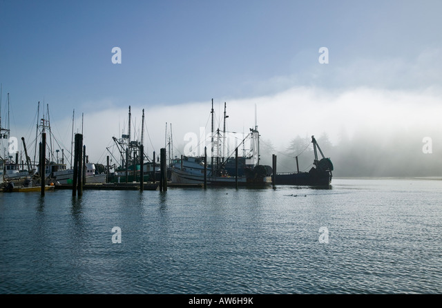 Coos stock photos coos stock images alamy for Coos bay fishing