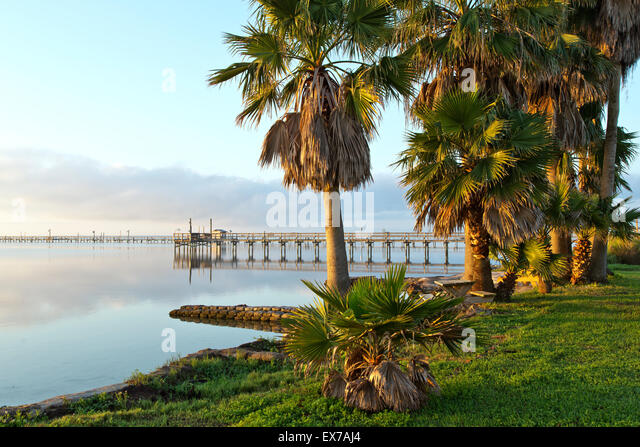 Fishing Pier, palm trees bordering Aransas Bay. - Stock Image