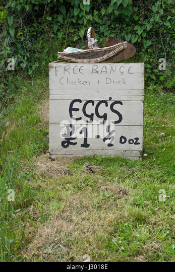 Stand at side of road selling free range eggs at £1 for half a dozen. - Stock Image