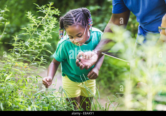 Father with daughter looking at plants in forest eco camp - Stock Image