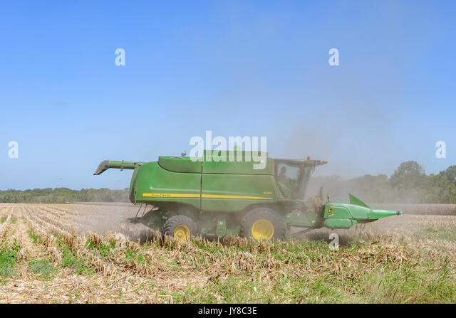 A John Deere S550 combine is cutting old harvested corn stalks to ready the field for next year's crop on a - Stock Image