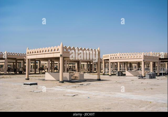 View of the Royal Camel Farm, Al Janabiyah, Bahrain - Stock Image