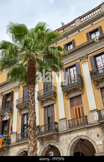 Street View Restaurant Palm Tree Stock Photos Amp Street