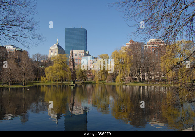 View of Buildings from Boston Common , Boston , USA , North America - Stock Image