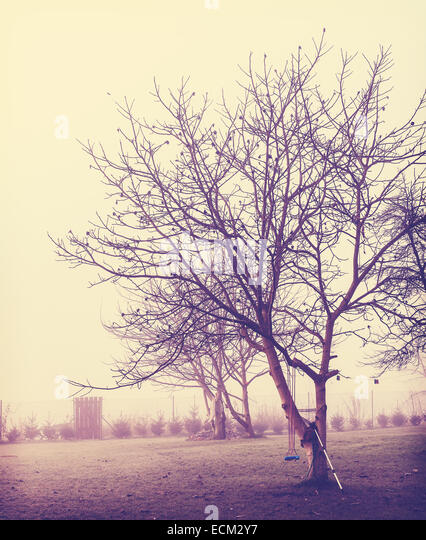 Retro vintage stylized picture of misty garden. - Stock-Bilder