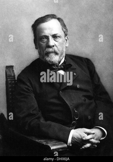 Louis Pasteur - Stock Image