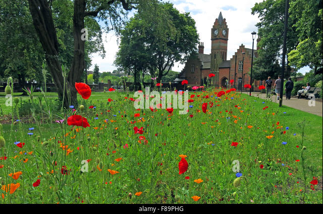 Walsall Arboretum in summer, West Midlands, England,UK - Stock Image