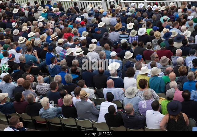 Crowd of people watching game of cricket, Birmingham, West Midlands, England, United Kingdom, Europe - Stock Image