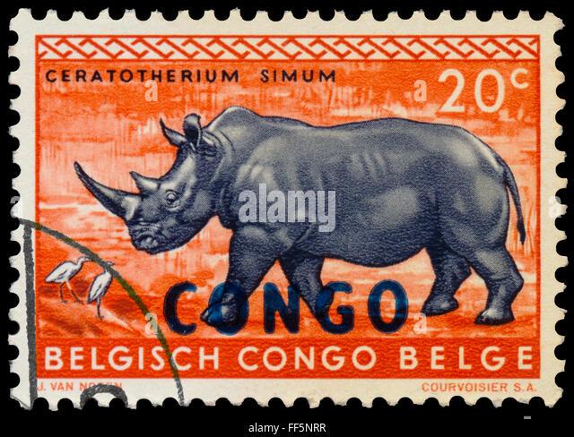 BELGIAN CONGO - CIRCA 1959: a stamp printed in Belgian Congo shows rhinoceros - Stock-Bilder