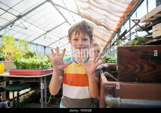 Boy in greenhouse showing his dirty hands - Stock Image