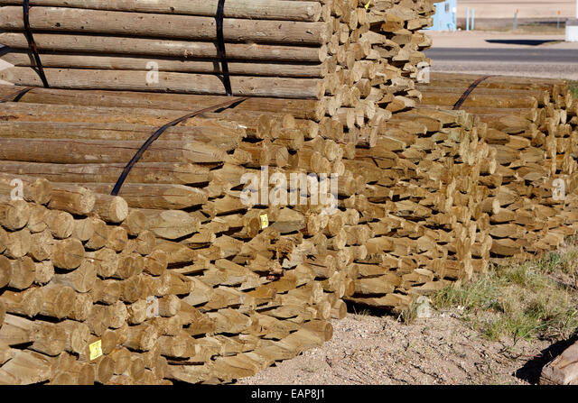 piles of wooden fencing poles at a mill Saskatchewan Canada - Stock Image