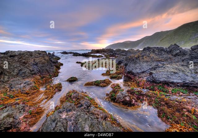Wellington coastal landscape new zealand stock photos for Landscaping rocks wellington