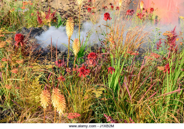 CONCEPTUAL GARDEN: WRATH ERUPTION OF UNHEALED ANGER  DESIGNED AND PLANTED BY NILUFER DANIS - Stock Image