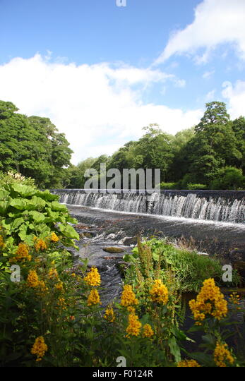 The weir on the River Derwent at Bamford in the Peak District National Park, Derbyshire England UK - Stock Image