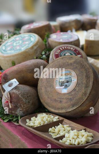 Typical Sardinian cheese based on sheep  milk,Sardinia,Italy,Europe - Stock Image