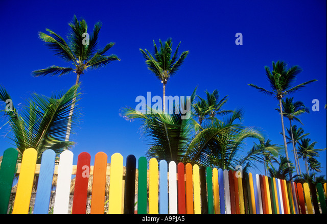 Dominican Republic Punta Cana Bavaro Beach Multi colored picket fence and palm trees on beach - Stock Image