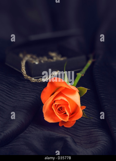 One rose on black silk and jewelry box - Stock Image