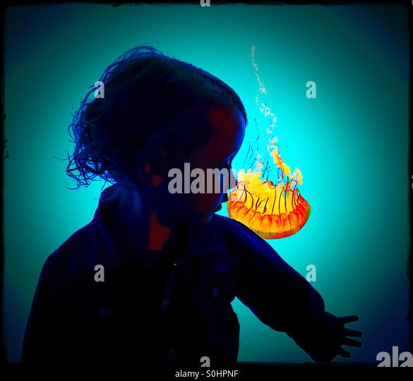Toddler silhouetted against jellyfish tank - Stock Image