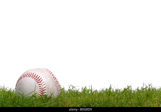 A baseball sitting in the grass shot against a white background - Stock Image