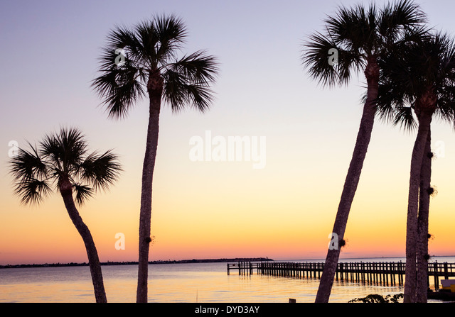 Florida Charlotte Harbor Port Charlotte Peace River sunset dusk water pier palm tree - Stock Image