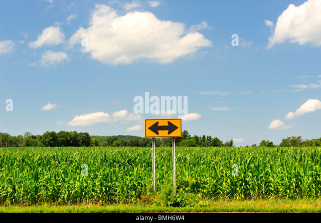 Which way should I go? Two-way arrow sign in cornfield blue sky cumulus clouds symbol of decision making choices - Stock Image