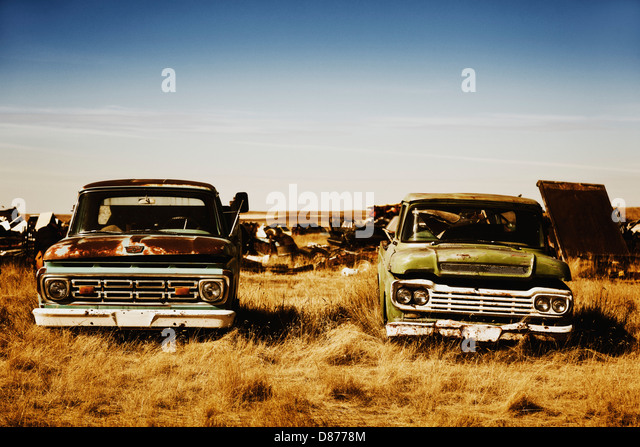 Canada, Junk yard with old US cars - Stock Image