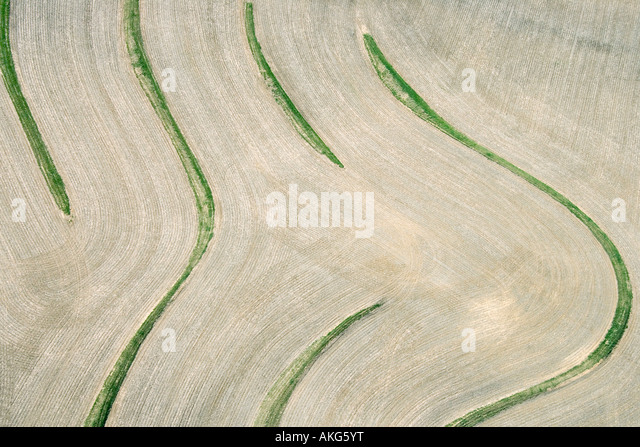 Aerial view of cropland with curvy lines - Stock Image