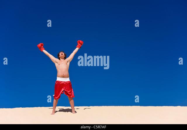 Boxer celebrating - Stock-Bilder