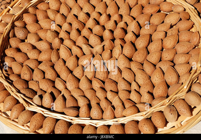 Typical almond from Toritto, Puglia,Italy,Europe - Stock Image