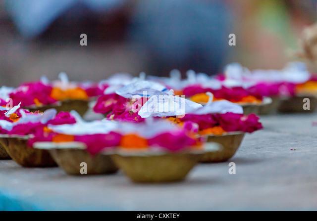 Offering Cups in Varanasi - Stock-Bilder
