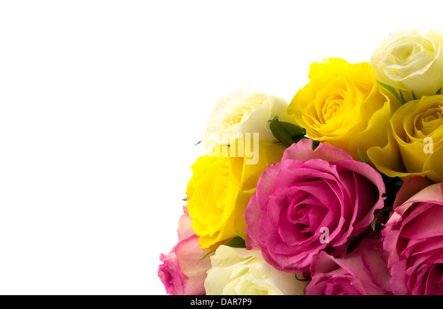 Rose bouquet with pink,yellow and white roses - Stock Image