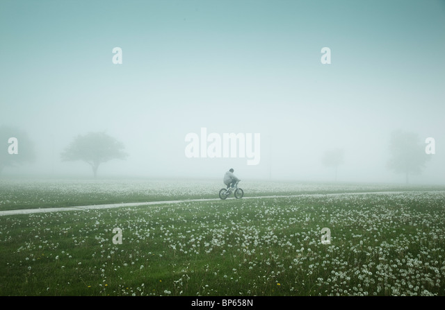 Boy riding bicycle through a foggy field - Stock Image