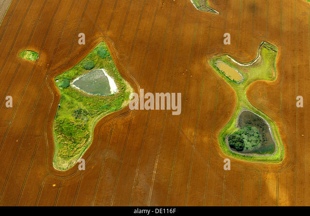 Aerial view, harvested field with ponds and meadow islands - Stock Image