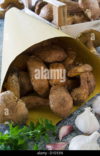 Ceps mushrooms (Boletus edulis) in a bag and in a wooden box, Italy, Europe - Stock Image