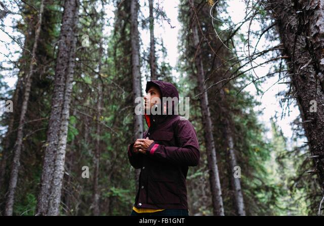 Low angle view mid adult man forest fastening waterproof coat away Moraine lake Banff National Park Alberta Canada - Stock Image